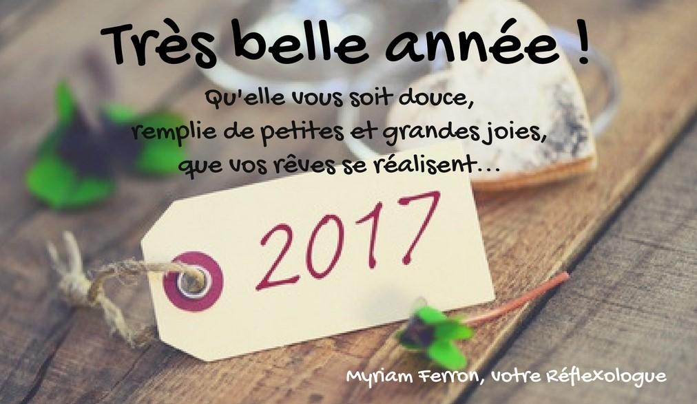 tres-belle-annee-2017-quelle-vous-soit-douce-remplie-de-petites-et-grandes-joies